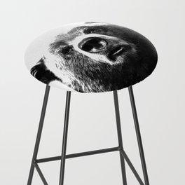 Black and white bear portrait Bar Stool
