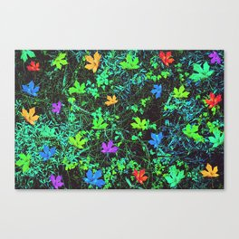 maple leaf in pink blue green orange with green creepers plants Canvas Print