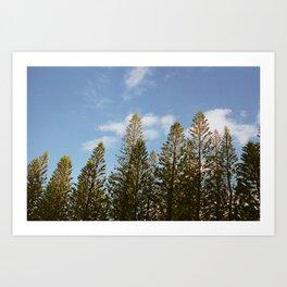 To the Treetops Art Print