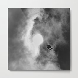 Wood Pigeon. Looking For The Sun. From My Window. Metal Print