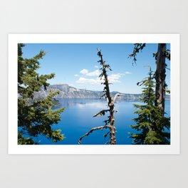 Blue Through the Trees Art Print