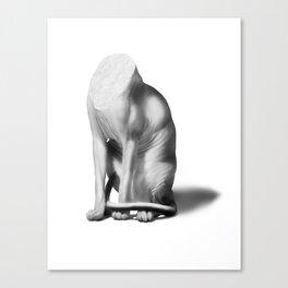 headless sphynx Canvas Print