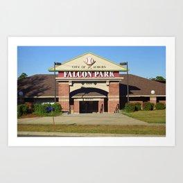 Auburn, NY - Falcon Park 2005 Art Print