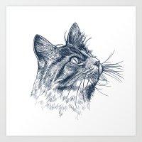 Cat Portrait Art Print