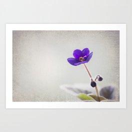 Boxing purple Art Print