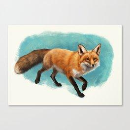 Fox walk Canvas Print