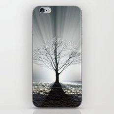 Rays of Fog iPhone & iPod Skin