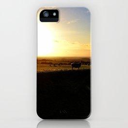 Sheep - The Hill of Tara iPhone Case