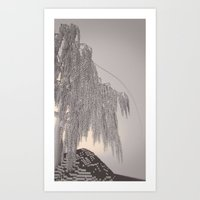 Weeping Willow /ˈvɒksɛl/ Diptych Right Art Print