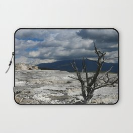Minerva Spring and Terrace Laptop Sleeve