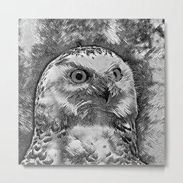 AnimalArtBW_Owl_20170908_by_JAMColorsSpecial Metal Print