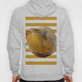 A Sea Shell with Nautical Stripes in Butterscotch and White Hoody