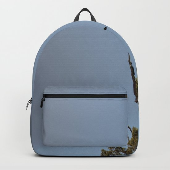 Perched Before the Storm Backpack