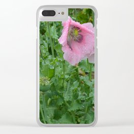 Poppies in rain Clear iPhone Case
