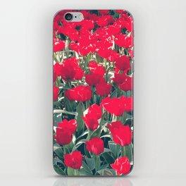 Spring tulips iPhone Skin