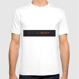 fire birds T-shirt