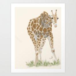 A giraffe I met Art Print