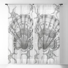 Dystopian Cockle - Black & White Sheer Curtain