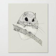 Fuzzball-gray Canvas Print