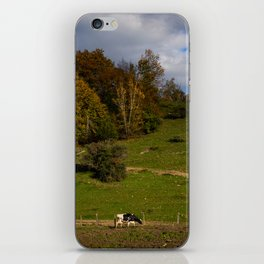 The Pasture iPhone Skin