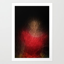 Somewhere in the woods. Art Print