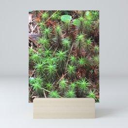 Flora & Fauna by Dana Tinnell - Twilight Paintings Mini Art Print