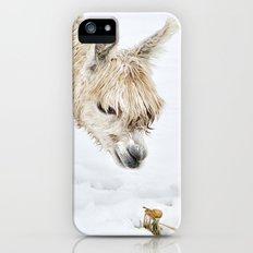 Hello...... Are you cold? Slim Case iPhone (5, 5s)
