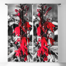 Cardinal Flower Blackout Curtain