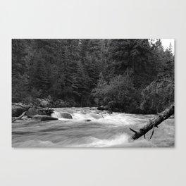 Running Water Canvas Print