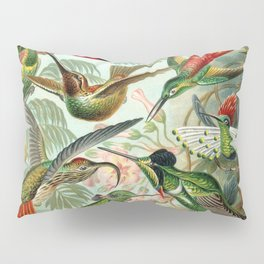 Vintage Hummingbirds Decorative Illustration Pillow Sham