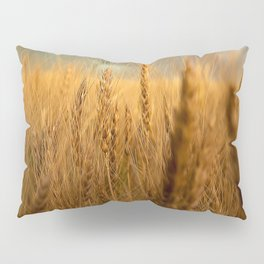 Harvest Time - Golden Wheat in Colorado Field Pillow Sham
