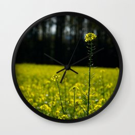 Some Growth Different Wall Clock