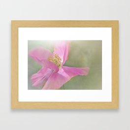 Fuchsia Pink Flower Framed Art Print