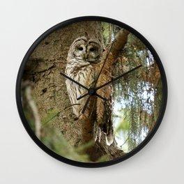 Beautiful Barred Owl Wall Clock