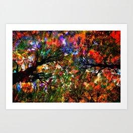 Autumnal Forest Art Print