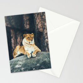 Lion on the rock Stationery Cards