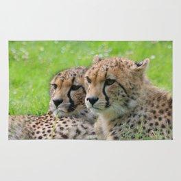 Cheetah_20171203_by_JAMFoto Rug