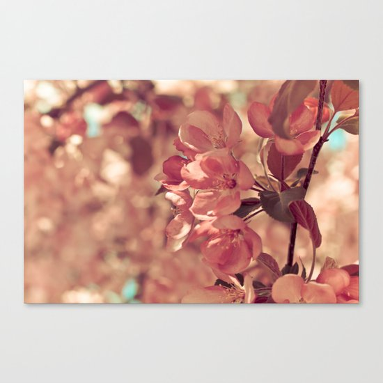 Ode to pink Canvas Print