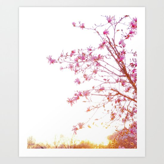 Sun-Drenched Art Print