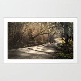 Path through the fairy tales forest Art Print