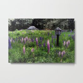 Bird House in the Lupine Metal Print