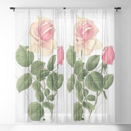 Pink Tea Rose Geometric Sheer Curtain