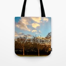 Getty Trees Tote Bag