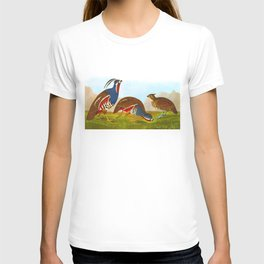 Plumed Partridge and Thick-legged Partridge T-shirt