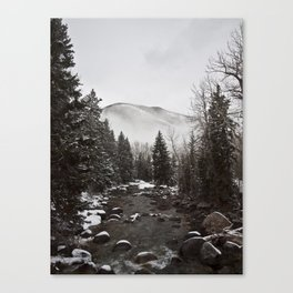 Mid Winter Canvas Print