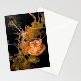 Sea Nettles Stationery Cards