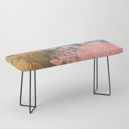 Coral Reef [1]: colorful abstract in blue, teal, gold, and pink Bench
