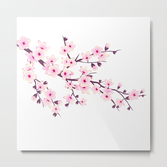 Cherry Blossom Pink White Metal Print