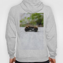 Wannabe Tiger (Fox Moth Caterpillar) Hoody