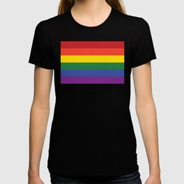 Gay Flag T-shirt